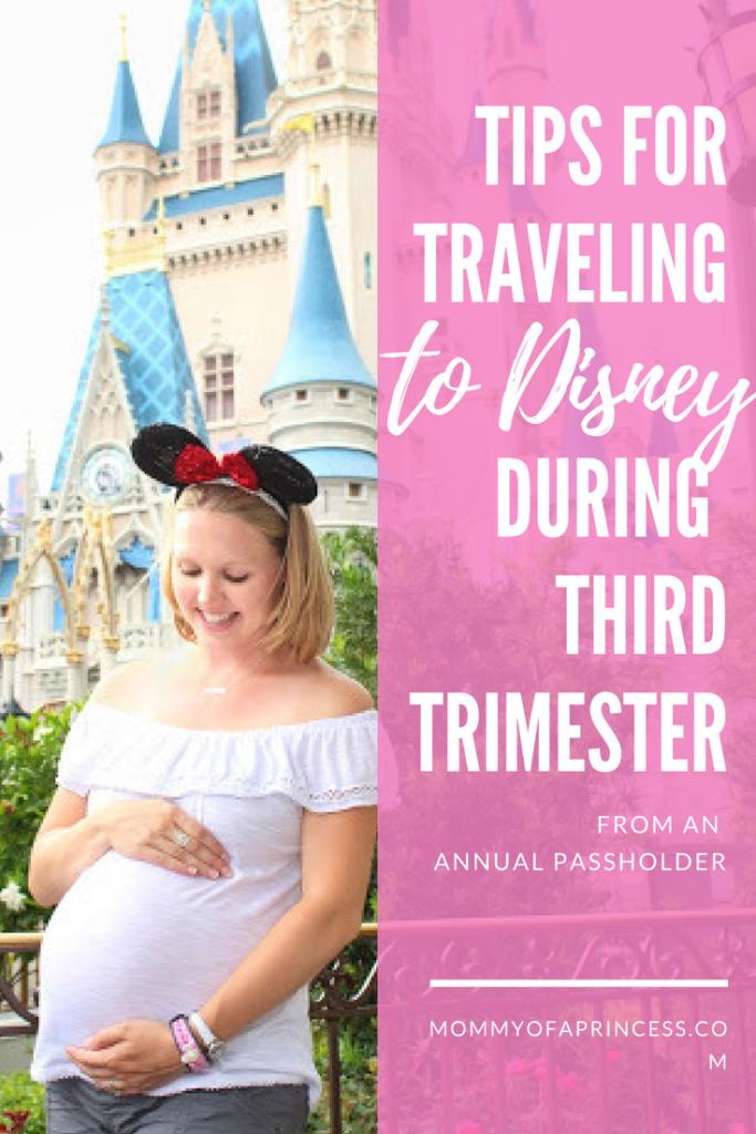 Disney While Pregnant
