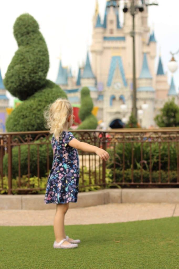 Toddler Area Magic Kingdom: Hub Grass