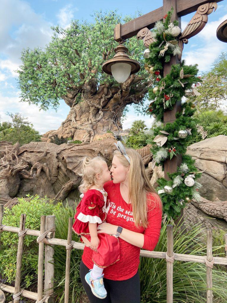 Christmas at Animal Kingdom NEW FOR 2019